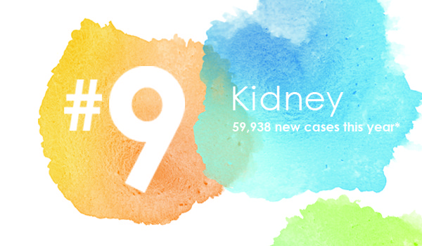 OHC Blog Most Common Cancer #9 Kidney Cancer