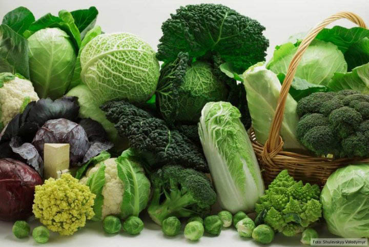 Diets Devoid Of Vegetables May Cause Colon Cancer Ohc